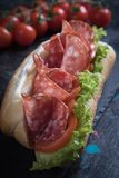 Italian submarine sandwich. With cured meat, lettuce and tomato Royalty Free Stock Photos