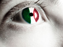 Italian supporter Stock Photo