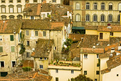 Italian tiled roof tops and high rise gardens Stock Photography