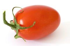 Italian tomato royalty free stock photo