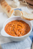 Italian Tomato and Bread Soup Royalty Free Stock Photography