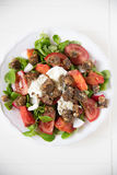 Italian Tomato Salad with Mozzarella cheese Stock Images