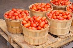 Italian tomatoes Royalty Free Stock Photos