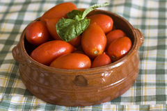 Italian tomatoes Royalty Free Stock Photos