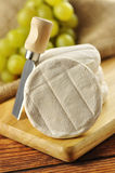 Italian tomino cheese on a wooden chopping board stock image