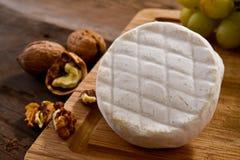 Italian tomino cheese Stock Photos