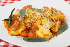 Italian tortellini pasta with tomato sauce Royalty Free Stock Photo