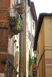Italian Town Houses. The houses in this Italian town are built close together.  Window boxes boast a variety of plant life Royalty Free Stock Images