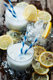 Italian traditional lemon sorbet Royalty Free Stock Images