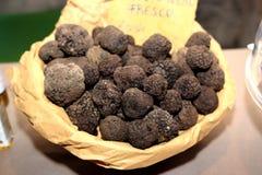 Italian  truffle Stock Photography