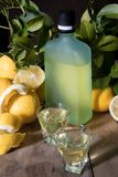 Italian typical digestive limoncello with fresh lemons on a old wooden background, low key stock photo