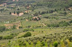 Italian typical landscape in Tuscany , Italy Royalty Free Stock Images