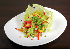 Italian vegetable salad. Italian salad Iceberg with vegetable: pepper, cabbage, cucumber, tomato Stock Images