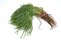 Italian vegetables - Agretti Royalty Free Stock Photo
