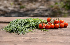 Italian vegetables Stock Photography