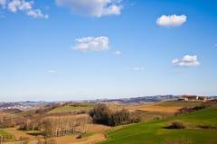 Italian villa with vineyard: spring season Royalty Free Stock Image