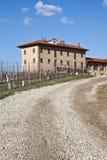 Italian villa with vineyard: spring season Stock Photography