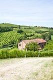 Italian villa with vineyard: spring season. Charming Italian villa in Monferrato area (Piemonte region, north Italy) during spring season Royalty Free Stock Images