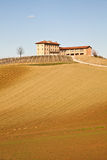 Italian Villa With Vineyard: Spring Season Stock Photo