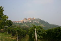Italian vineyard. With view on village on top of a hill Stock Image
