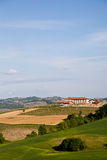 Italian Vineyard: Monferrato Stock Photography