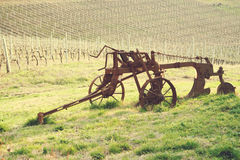 Italian vineyard. With a plow Royalty Free Stock Images