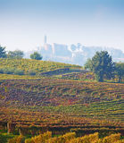 Italian vineyards ( on the background Calosso, Asti, Piedmont). Italian vineyards in autumn. On the background Calosso, Asti, Piedmont, Italy Stock Photo