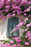 Italian window. Surrounded with flowers Royalty Free Stock Photography