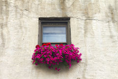 Italian Windowsill With Colorful Flowers Stock Photo