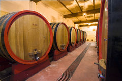 Italian winery. View of the interior of an Italian winery with large oak casks Royalty Free Stock Images