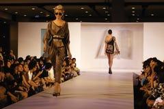 Italiana van Accademia werkt f.fashion samen Stock Fotografie