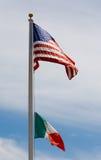 Italiano-Americano Imagen de archivo libre de regalías