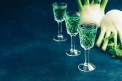 Italiano ou licor checo ou amargo tradicional com erva-doce foto de stock royalty free