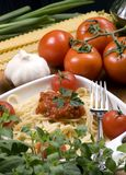 Italiano que cocina 006 Fotos de archivo libres de regalías