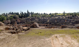 Italica Coliseum Stock Images