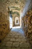 Italica Roman Ruins, Espanha Foto de Stock