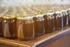 Italien, Emilia Romagna, die Honigfabrik Stockbilder