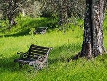 Italien - fred i Tuscany Royaltyfria Bilder