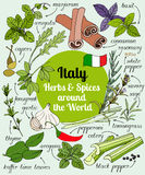 Italien-Kräuter und -gewürze Lizenzfreies Stockfoto