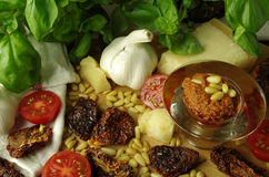 Italien pesto rosso sauce Royalty Free Stock Image