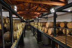 Italien Piedmont, Langhe, vinturister på `-Cascina Monfalletto `, fotografering för bildbyråer