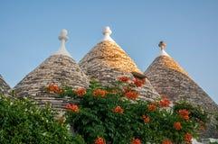 Italien Puglia Trulli Alberobello Stockfotos