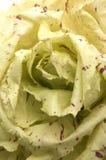 Italien radicchio Salat Stockfotografie