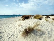 Italien Sardinia, Carbonia Iglesias, Porto Pino, dyerna sätter på land Fotografering för Bildbyråer