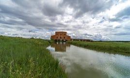 Italien, Toskana, Castiglione-della Pescaia, Ansicht des Naturreservat Diaccia Botrona hdr lizenzfreies stockbild