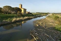 Italien, Toskana, Grosseto, Maremma, Marina di Alberese, Naturpark von Maremma stockbild