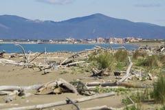 Italien Toskana Maremma, auf dem Strand in Richtung zu Bocca di Ombrone, Ansicht der K?stenlinie, im Hintergrund Marina di Grosse stockbilder