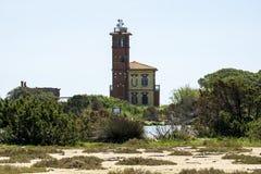 Italien Toskana Maremma, auf dem Strand in Richtung zu Bocca di Ombrone, der Mund des Flusses und des Hauses der Waldw?chter stockbilder