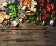 Italienare grillad tomat- och vitlöksoppa i bunken, kopieringsutrymme royaltyfria bilder