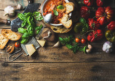 Italienare grillad tomat- och vitlöksoppa i bunken, kopieringsutrymme Arkivbilder